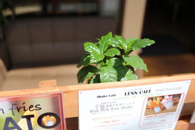 Terrace(テラス)レンカフェ(LENN-CAFE)3